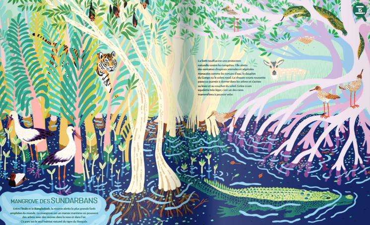 Nathan invite les jeunes enfants à explorer les «Jungles» du monde