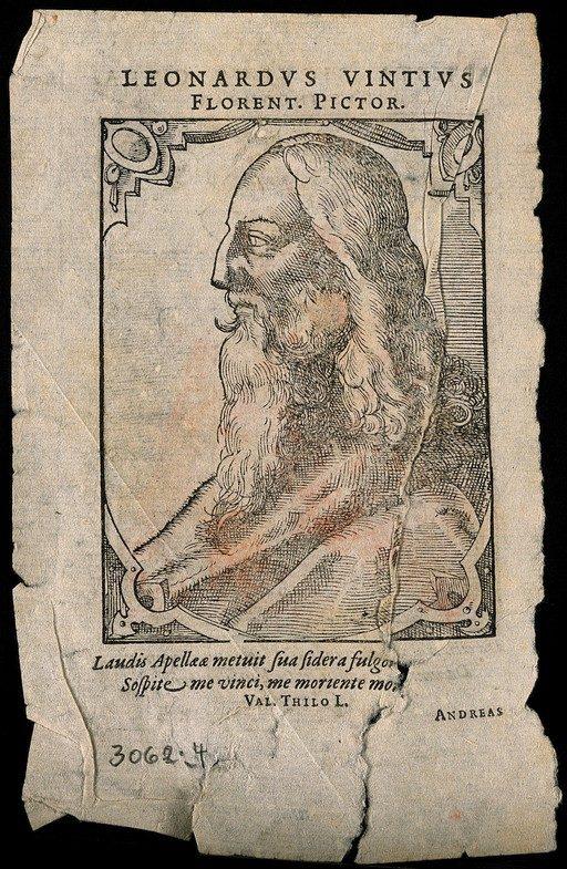 La redécouverte d'une mèche de cheveux de Léonard de Vinci pourrait nous mener à son ADN