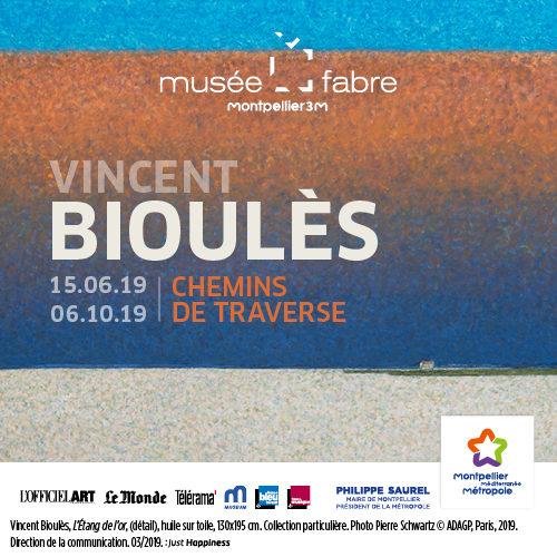 Michel Hilaire nous parle de l'exposition Vincent Bioulès au Musée Fabre