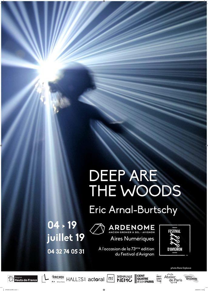 «Deep are the woods», le ballet lumineux d'Éric Arnal-Burtschy