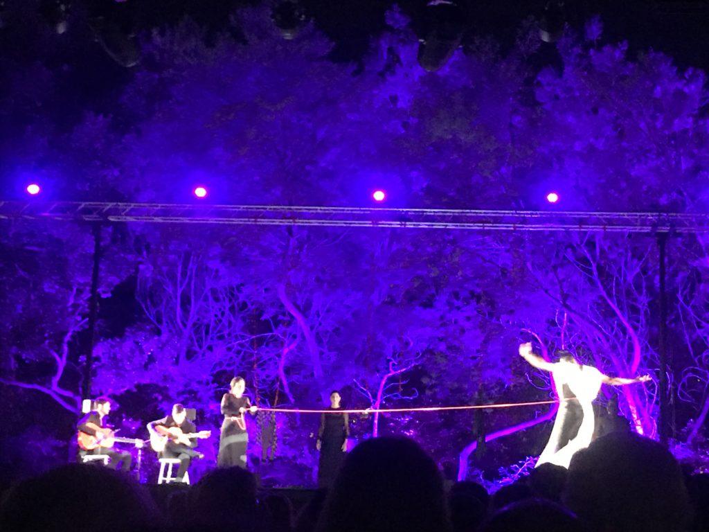 Une ouverture Flamenco pour les Nuits de la Moutte avec Eduardo Guerrero