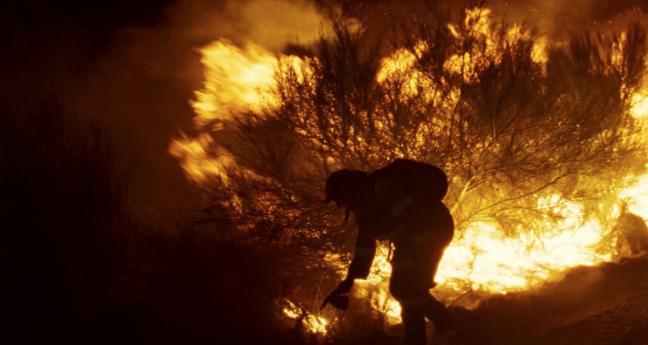 «Viendra le feu d'Oliver Laxe» : Portrait d'une forêt en feu