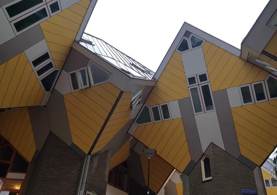 5 bonnes raisons d'aller à Rotterdam