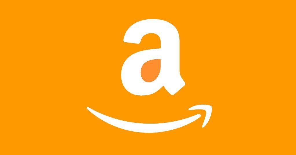 Le point sur Amazon
