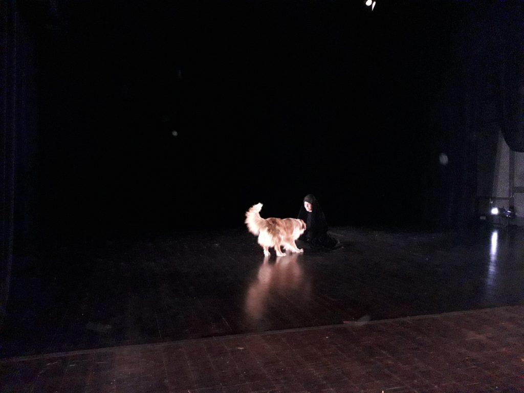 Entre théâtre, cinéma et élevage canin : une journée de répétition avec Alexandre Zeff