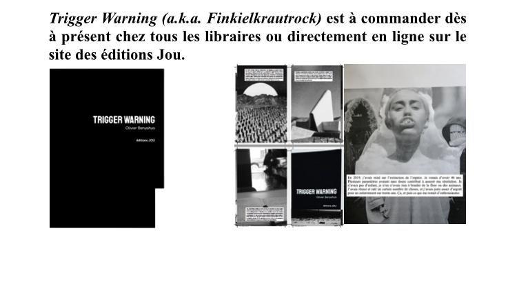 Trigger Warning (a.k.a. Finkielkrautrock), Ovni littéraire