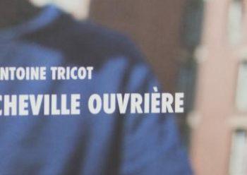 Cheville Ouvrière Antoine Tricot