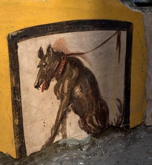 Une insulte «homophobe» sur une fresque de Pompéi
