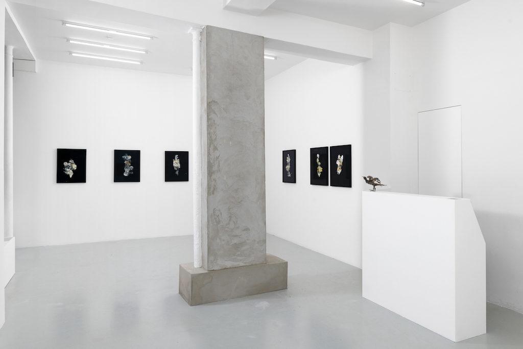 Papiers noirs, exposition de Lionel Sabatté à la galerie C, Paris