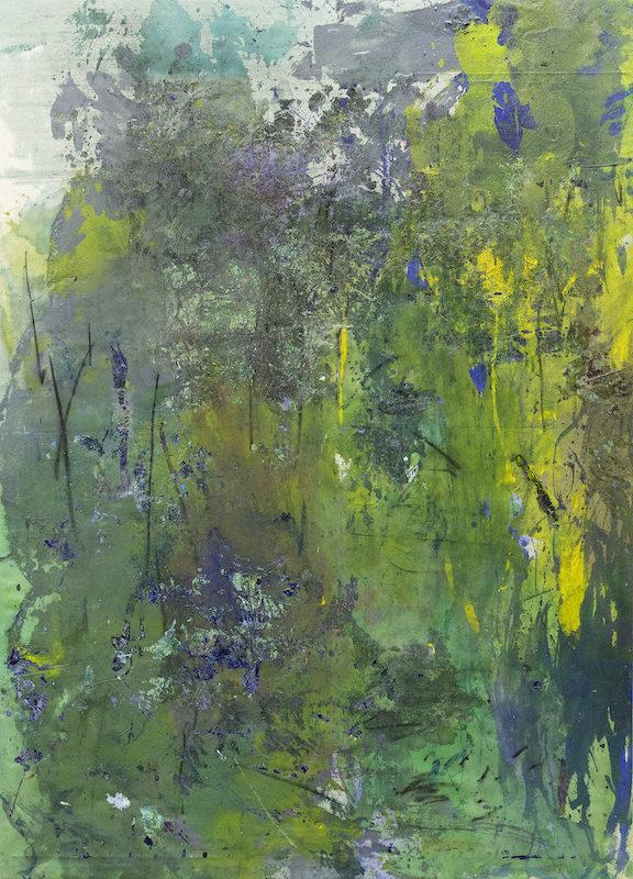 «Nowhere island», la possibilité d'un paysage, exposition personnelle de Lin Calle à la Galerie Insula