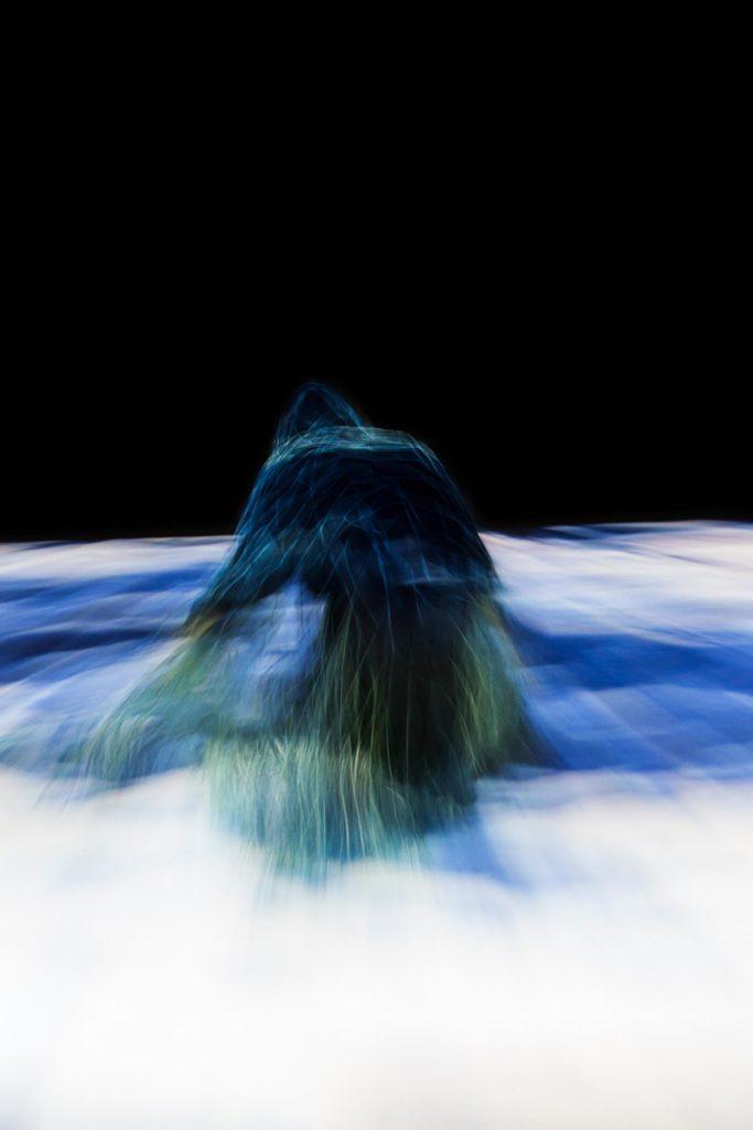 «Datadream» : rêverie numérique de Steven Michel