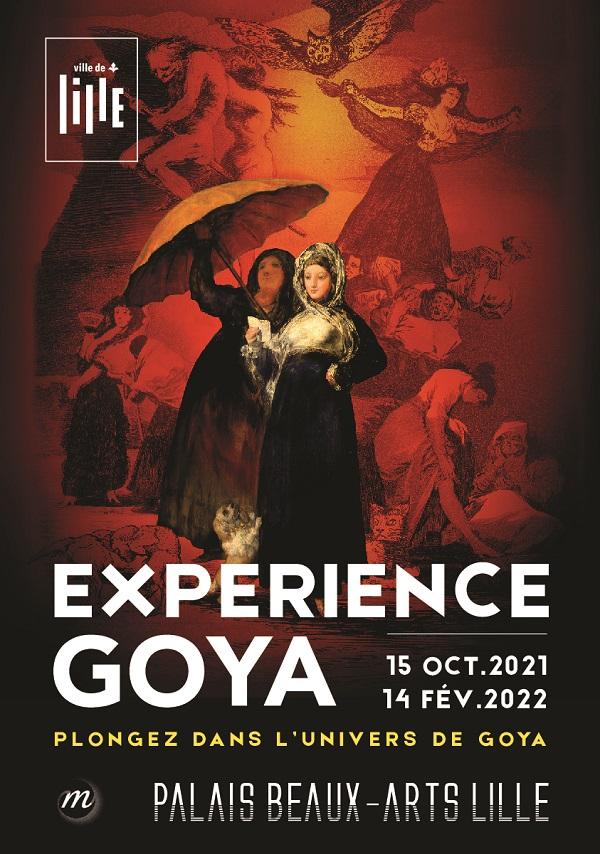 Expérience Goya Lille