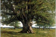 Des sous pour Courbet ! La France veut récupérer Le chêne de Flagey