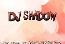 Dj Shadow, «trop futuriste», se fait virer d'un club à Miami