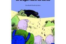 Le dragon dans les dunes d'Olivier De Solminihac