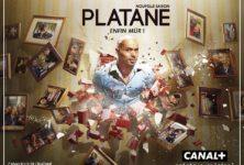 Platane, un marronier ou une marotte ciné-glam des Français ?