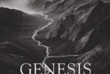 [Expo] Sebastião Salgado magnifie la nature avec «Genesis»