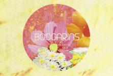 [Chronique] « As Planta Que Curam » de Boogarins : pop psyché et thérapeutique