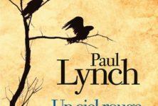«Un ciel rouge, le matin», un premier roman venu d'Irlande profonde signé Paul Lynch