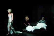 «Une femme» de Philippe Minyana à la Colline : une vie tout en nuances de gris