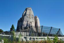 Réouverture du mythique zoo de Vincennes