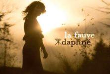 [Live report] Daphné : le lâcher d'une délicate fauve à la Cigale