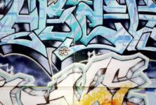 Savoirs : Les 8 conférences de l'été 2014