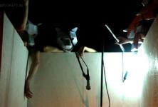 [Critique] « Dévoration » au Festival Préliminaires à Vanves : des longueurs mais aussi de belles fulgurances