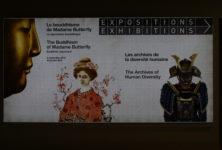 [Exposition] «Le Bouddhisme de Madame Butterfly» se pose au Musée d'Ethnographie de Genève