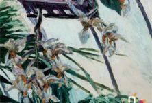 «Caillebotte peintre et jardinier» au musée des impressionnistes de Giverny