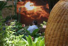 [Avignon] Fabrice Sabre expose ses soleils à la Maison des Fogasses