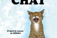 Adopter la neko mania attitude avec «Je suis un chat » de Cobato Tirol chez Picquier