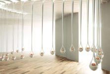 Le Grand Musée du Parfum enfin dévoilé à Paris