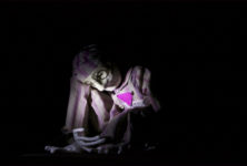 «Schweinehund»: un sujet nécessaire mais un traitement trop frustre [Biennale des Arts de la Marionnette]