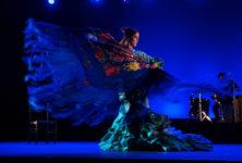 Arte Flamenco a enflammé son public