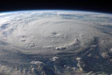 Ouragan Irma, le monde culturel se mobilise