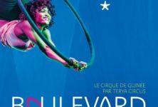 Envolez-vous avec «Boulevard Conakry» au musée du quai Branly – Jacques Chirac
