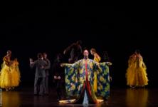 Le Ballet royal de la nuit: Féerie et émerveillement avant Noël
