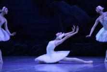 Grâce, maîtrise et tradition : Le Lac des Cygnes par l'Opéra National de Russie