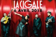 Gagnez 3×2 places pour le concert de Paris Combo à La Cigale le 6 avril