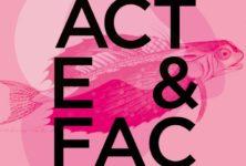 Acte et Fac : un festival plein de jeunes promesses