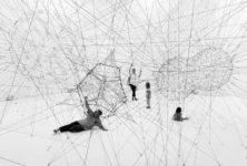 Tomas Saraceno : une proposition vibrante au Palais de Tokyo