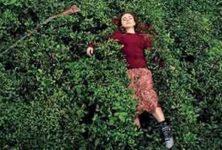 Au 40e Cinemed, «Sibel» et autres contes politiques, dans la section Compétition