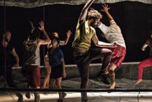 «Aujourd'hui sauvage», les combats sages de Lambert et Gladieux au Centre Pompidou