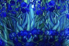Van Gogh, La nuit étoilée : une (ré)création à l'Atelier des Lumières