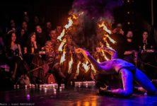 Au «Cabaret Electrique», le Tigre de la Porte des Lilas s'est assagi