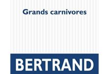«Grands carnivores», le verbe de Bertrand Belin met le pouvoir dans la gueule du lion