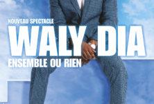 Waly Dia – Un one-man-show qui fait du bien
