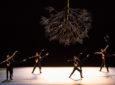 Jirí Kylián clôt son cycle de résidence à l'Opéra de Lyon par une soirée magistrale