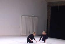 L and L , un spectacle de danse tout en poésie